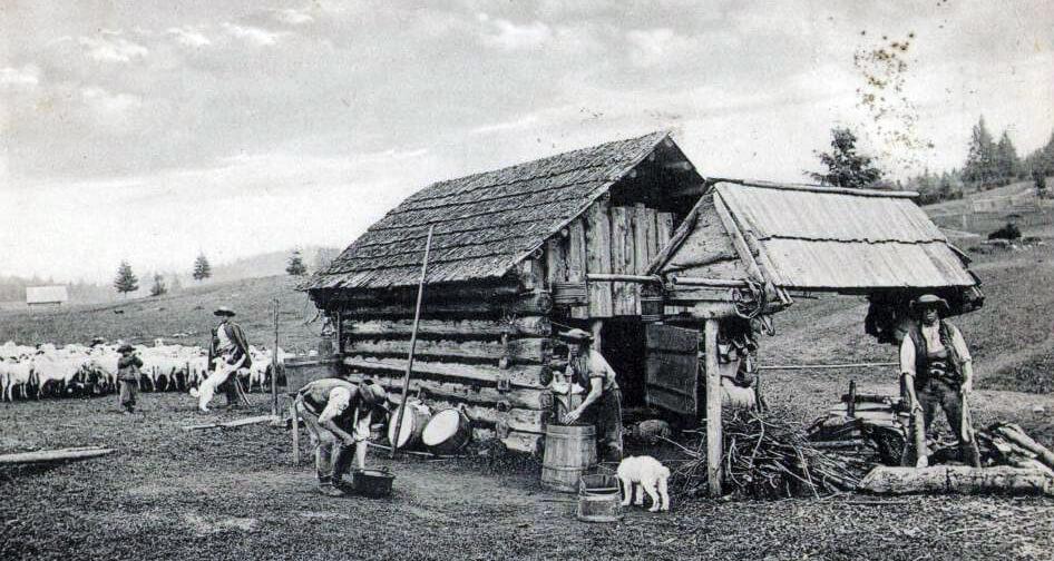 Letné práce našich predkov - pastierstvo